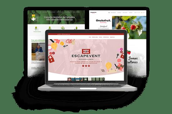 Diseñador páginas web Huelva