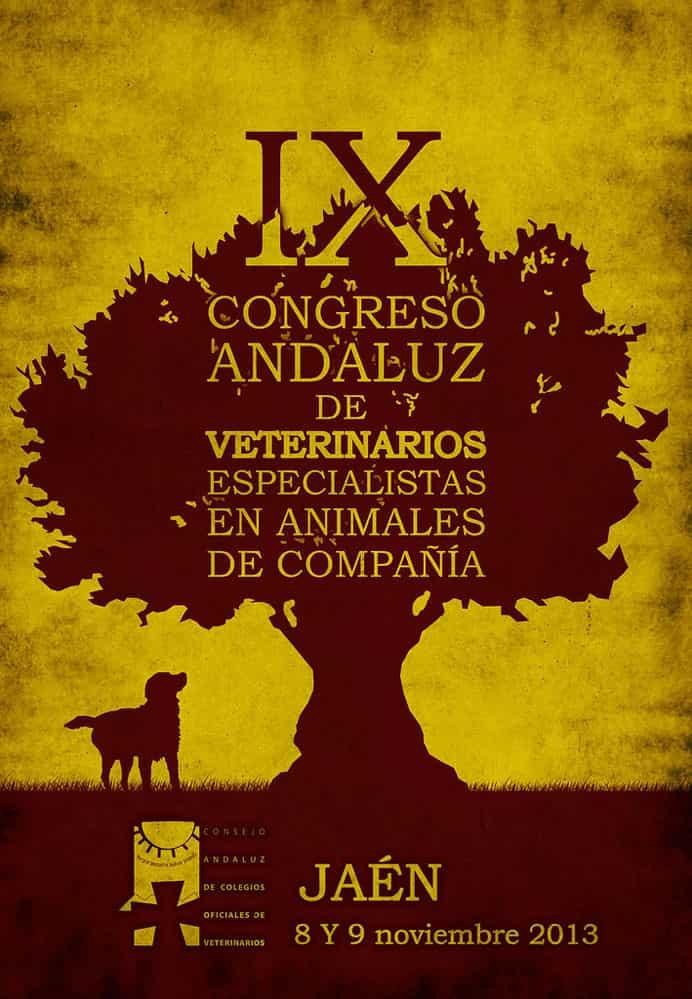 Diseño cartel Congreso Andaluz de Córdoba