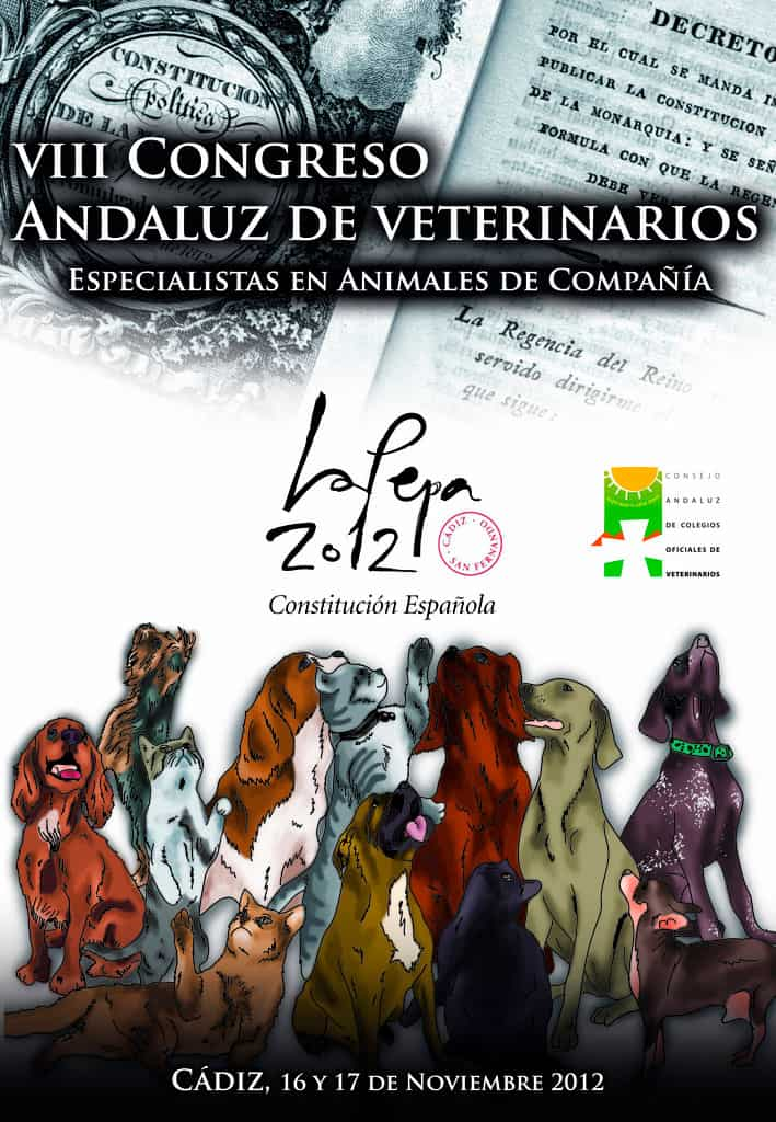 Diseño cartel Congreso Andaluz de Cádiz